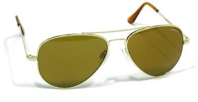 abdf11356dd Detailed Description. Randolph Concorde Aviator Sunglasses  Polarized ...